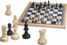 Groot magnetisch schaakspel